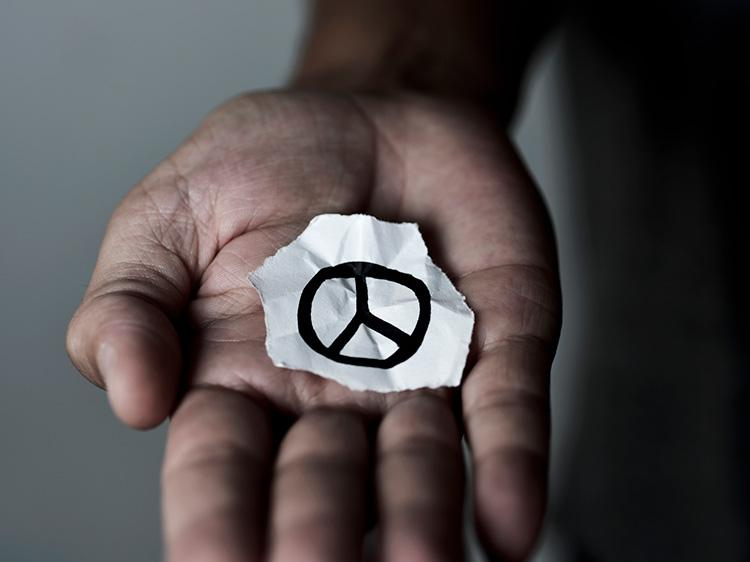 Humanitarian Jobs For International Day Of Peace | Monster com