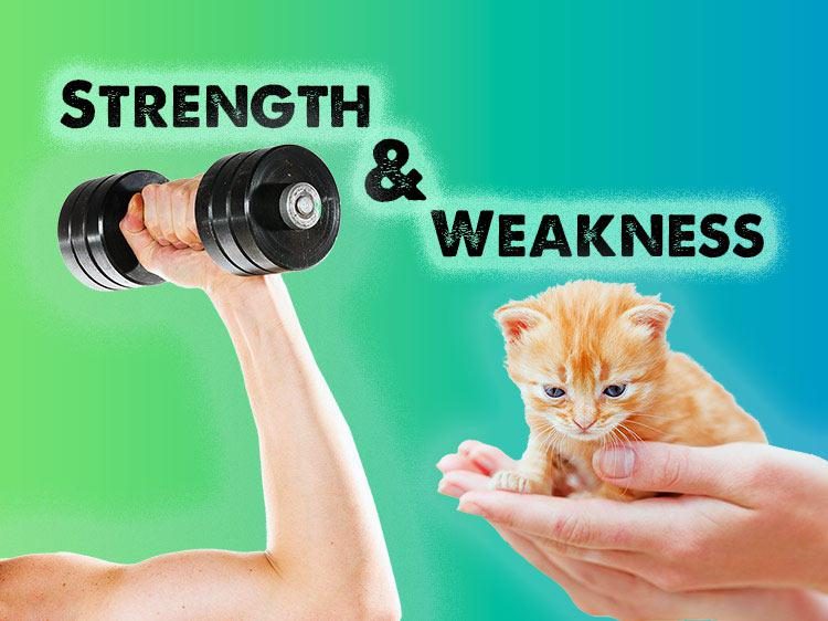 List Of Strength Weaknesses For Job Interviews
