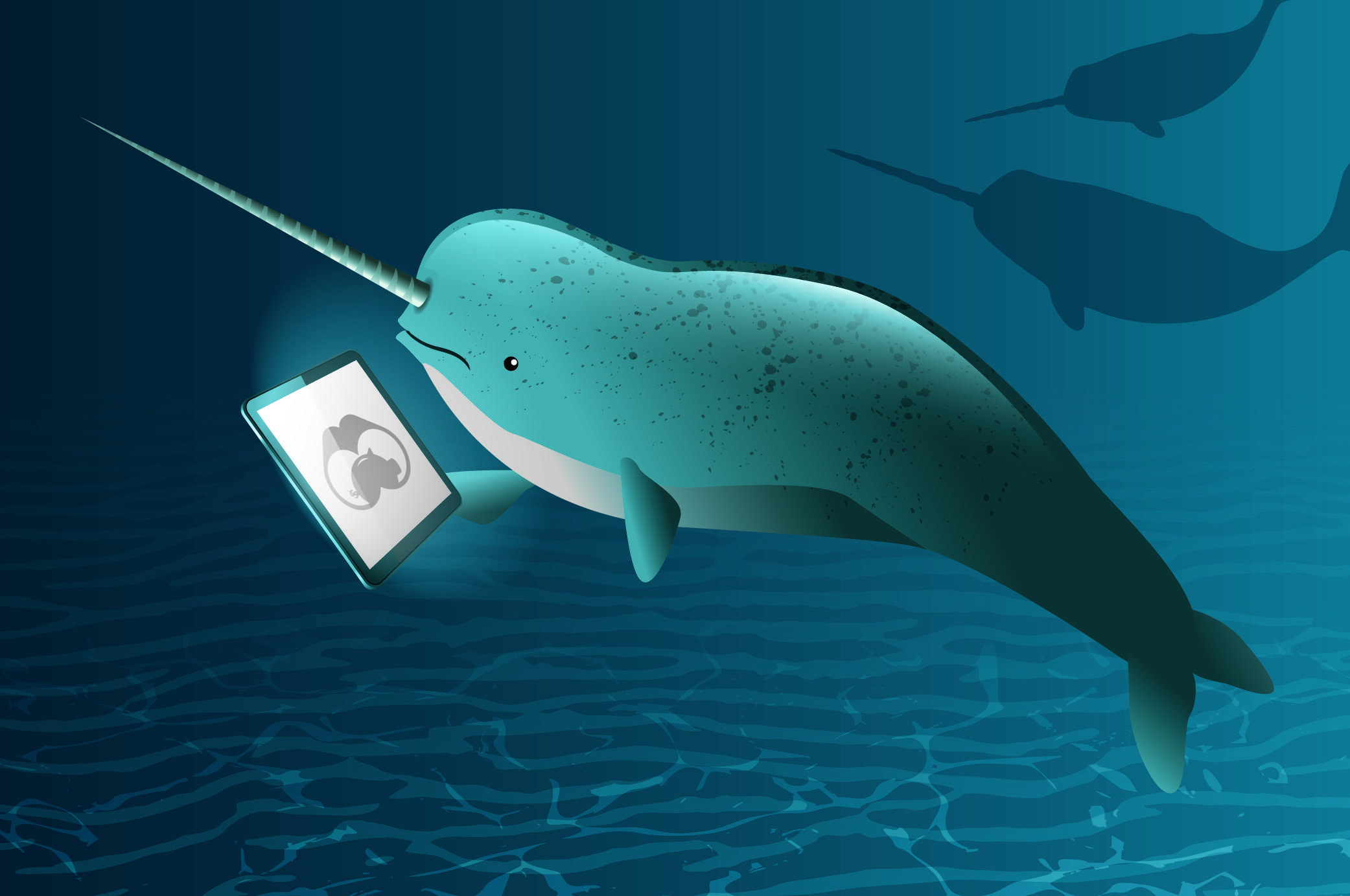 Narwhals: A Guide to Canadian Unicorns