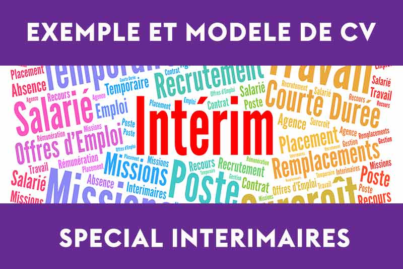Exemple De Cv Interim Et Conseils De Rédaction Monster Fr